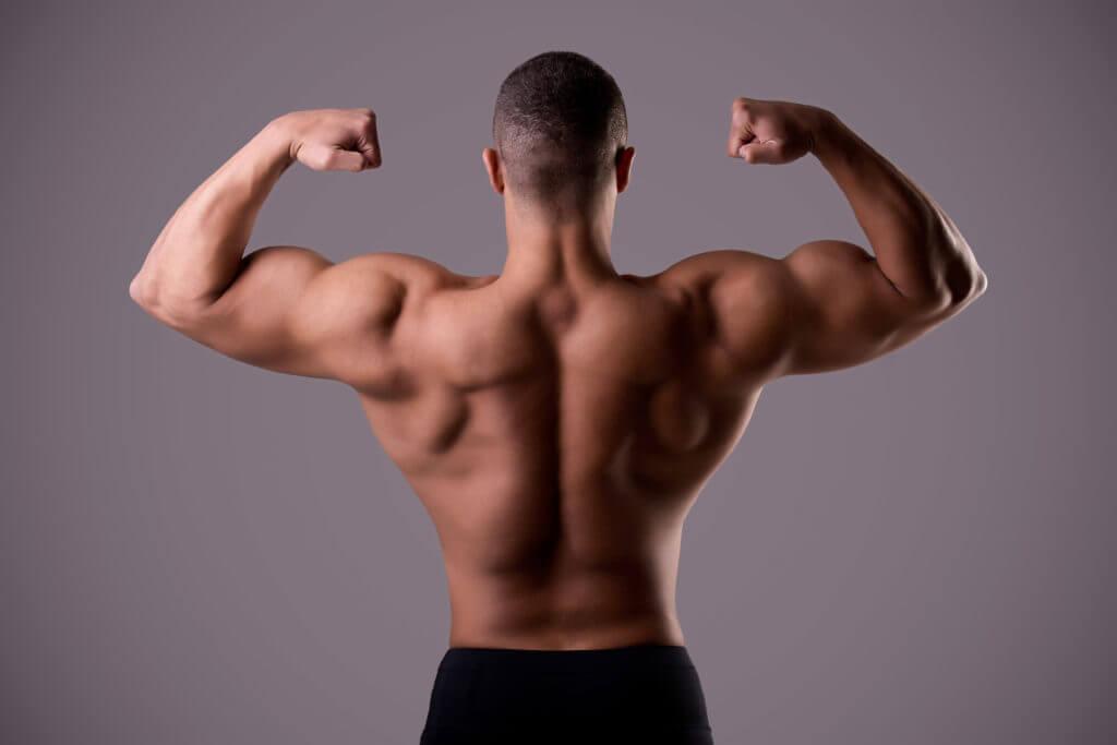 Flot muskuløs ryg